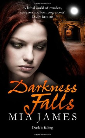 Darkness Falls (A Ravenwood Mystery, #2)