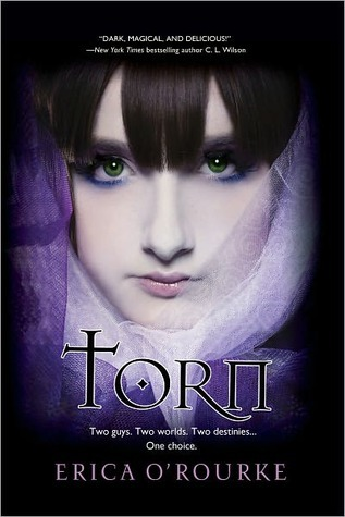 Torn by Erica O'Rourke