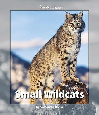 Small Wildcats