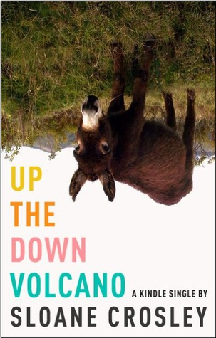 Up the Down Volcano by Sloane Crosley