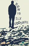 How To Say Goodbye by James Valvis
