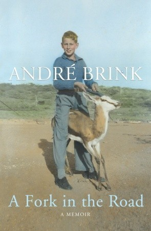 A Fork in the Road by André Brink