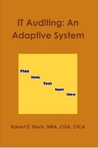 IT Auditing: An Adaptive System (IT Auditing, #2)
