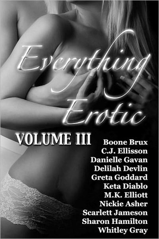 Everything Erotic Volume III by Boone Brux