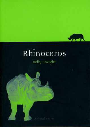 Rhinoceros by Kelly Enright