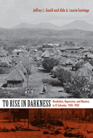 To Rise in Darkness by Jeffrey L. Gould