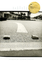The Theory of Light and Matter by Andrew  Porter