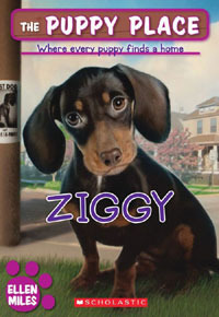 Ziggy (The Puppy Place, #21)