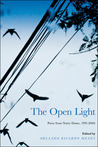 The Open Light: Poets from Notre Dame, 1991-2008
