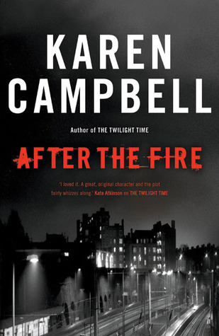 After the Fire (Anna Cameron #2)