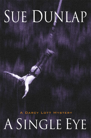 A Single Eye (Darcy Lott, #1)