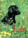 Love of Labs: The Ultimate Tribute to Labrador Retrievers (Petlife Library)