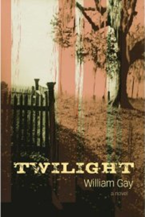 book report on twilight