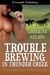 Trouble Brewing in Thunder Creek (Thunder Creek Ranch #3)