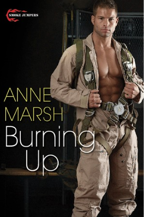 Burning Up by Anne Marsh