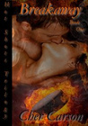 Breakaway (Hot Shots Trilogy, #1)