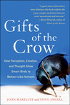 Gifts of the Crow...