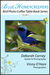 Blue Honeycreepers: Bird Photo Coffee Table Book Series