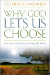 Why God Lets Us Choose: How Agency Explains the Way Life Works