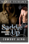 Saddle Up (Quicksilver Ranch, #2)