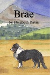 Brae Visits the Isle of Arran