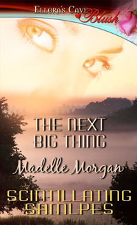 The Next Big Thing by Madelle Morgan