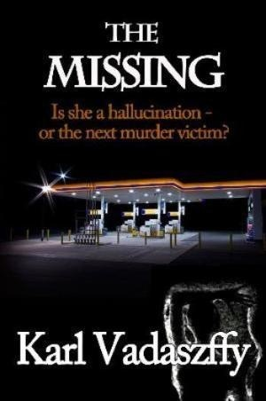 The Missing by Karl Vadaszffy