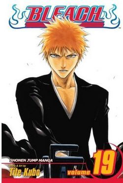 Bleach, Volume 19 by Tite Kubo
