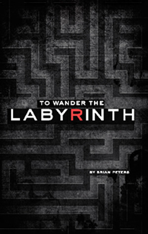 To Wander The Labyrinth by Brian  Peters