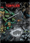 Teenage Mutant Ninja Turtles: The Ultimate Collection, Vol. 2