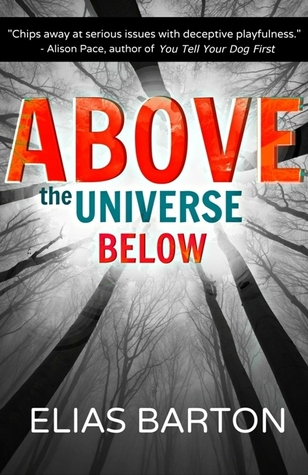 Above the Universe Below