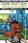 Teenage Mutant Ninja Turtles, Vol. 2: Enemies Old, Enemies New