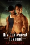 His Convenient Husband by J.L. Langley
