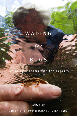 Wading for Bugs: Exploring Streams with the Experts