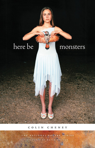 Here Be Monsters by Colin Cheney