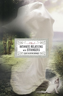 Intimate Relations with Strangers by David Valentine Bernard