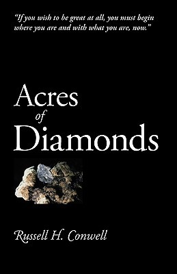 ashes and diamonds book review