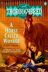 A Horse Called Wonder (Thoroughbred, #1)