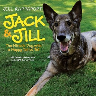 Jack & Jill: The Miracle Dog with a Happy Tail to Tell