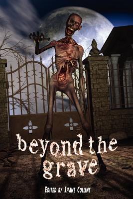 Beyond the Grave by Steven Gepp