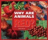 Why Are Animals Red?