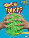 What Is Touch?