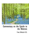 Commentary on the Epistle to the Hebrews, Volume 2