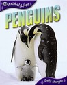 Penguins (Qed Animal Lives)