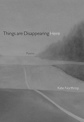 Things Are Disappearing Here: Poems