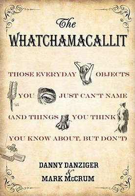 The Whatchamacallit by Danny Danziger