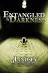 Entangled in Darkness