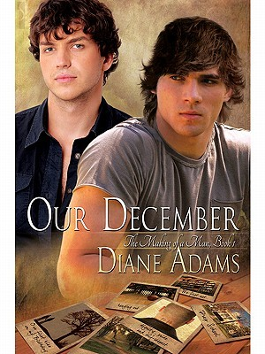 Our December by Diane  Adams