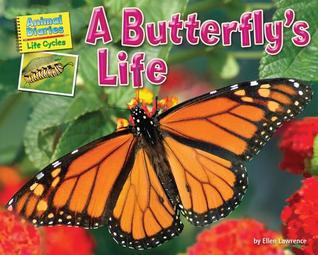 A Butterfly's Life