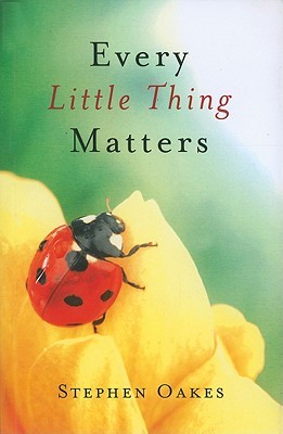 Every Little Thing Matters by Stephen Oakes